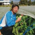 ■まめな農園■ 「自然な環境に蘇る!」という願いから 今までの化学肥料を中心とした近代農業から、昔ながらの農法をもう一度よく考え理解し、より良質でより効率よく行うことが必要です。葉物や根菜、果菜などオールマイティに栽培しています。