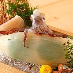 魚鮮水産 三代目網元 函館五稜郭本町店特集写真1