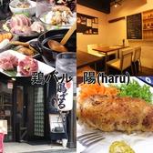 鶏バル 陽 haruの詳細
