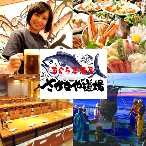 マグロと駿河湾の地魚専門♪ゆったり3H飲放コース2980円~6000円!ランチも始めました