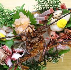 磯魚 イセエビ料理 ふる里のおすすめ料理1