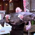 こんなに大きな魚も!?【幻の魚!!あぶらぼうず】も入荷することもあります!!水産会社直営だからできる新鮮さ・珍しさをご堪能下さい!!