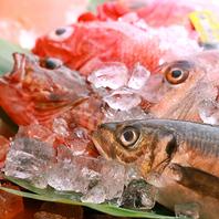 活きの良い旬の鮮魚が最大の魅力♪
