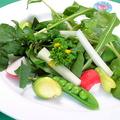 料理メニュー写真季節の野菜を使用した、旬なサラダ