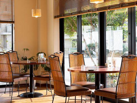太陽のカフェ 西宮店|店舗イメージ6