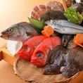 《朝獲れの鮮魚を堪能♪》