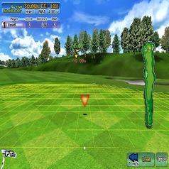 【室内ゴルフ】プレイ画面です♪