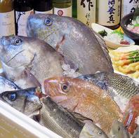 旬鮮魚!!!