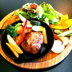 ★お好きなハンバーグ&サラダ
