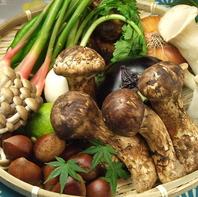 旬のこだわり新鮮野菜