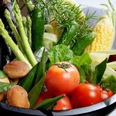 地元鹿児島中心とした厳選した旬の野菜を提供致します。【天文館 しゃぶしゃぶ 個室 飲み放題 地鶏 貸切 ステーキ 郷土料理 宴会】