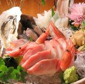 狐崎漁港 晴れの日のおすすめ料理2