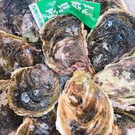 鹿児島にいながら新鮮な牡蠣を浜焼きで食べれる♪