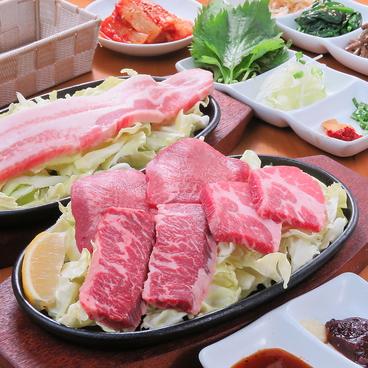 韓流居酒屋ホランモン 保土ヶ谷のおすすめ料理1