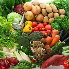 料理メニュー写真産直野菜の鉄板焼