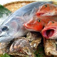 漁業直結だから旨い魚をリーズナブルにお届け!