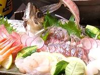 ぷりぷり&魚の旨みがギュっとつまったお刺身♪