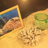 沖縄の海を思わせる白砂やサンゴ