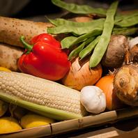 野菜が美味しく、女性にも人気。