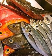 ◆新鮮な魚をいち早く食す◆
