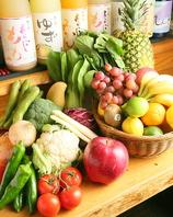 完全無農薬野菜。