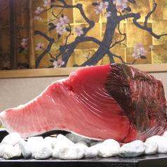 本鮪 桜和 ほんまぐろ おうわの写真