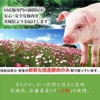毎日直送!【茨城県産極選豚】素材へのこだわり!