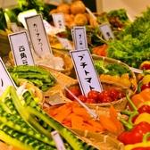 ベヂロカ 名古屋本店の写真