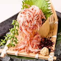 料理メニュー写真桜海老のお刺身