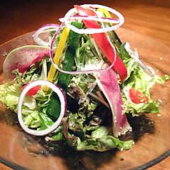 十五品目の彩り野菜サラダ