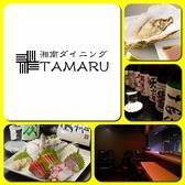 湘南ダイニング TAMARUの雰囲気3