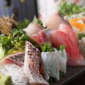 料理メニュー写真天草直送 本日の鮮魚三点盛り