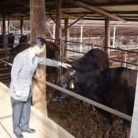 神石高原町の提携牧場