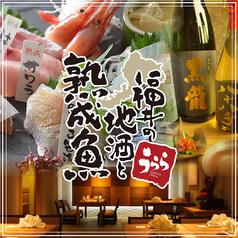 越前居酒屋 うらら 渋谷の写真