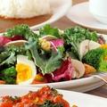 料理メニュー写真カーリーケールサラダ