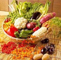豊富な全国各地の新鮮野菜