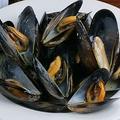料理メニュー写真【北海道サロマ湖】ムール貝の白ワイン蒸し