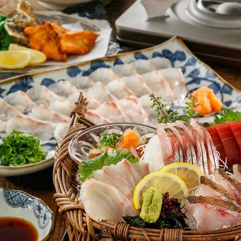 新高級魚種タマクエしゃぶしゃぶコース《全8品》4500円(税込)