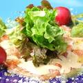 料理メニュー写真ノルウェーサーモンのカルパッチョ