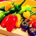新鮮な野菜もたっぷり!