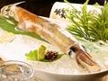料理メニュー写真泳ぎイカの一本釣り (最安値に挑戦中!)