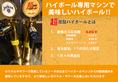 ◆ハイボール専用サーバー◆超高炭酸ハイボール&サワー&カクテルをお楽しみ頂けます。