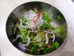 料理メニュー写真チシャサラダ
