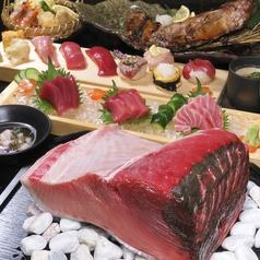 本鮪 桜和 ほんまぐろ おうわのおすすめ料理1