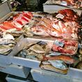 毎日新鮮なお魚を提供しています。