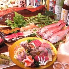 旬菜旬魚 造りの 山葵 わさびの特集写真