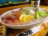 魚正本陣のおすすめ料理2