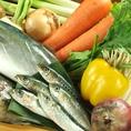 魚介だけじゃなく、野菜も鮮度にこだわり!