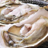 新鮮で大粒の牡蠣★