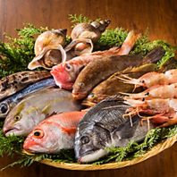 漁港直送!天然鮮魚